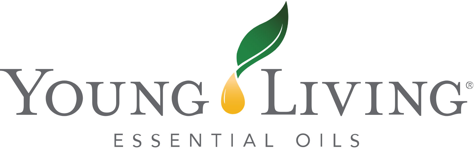 Subscription Essential Oil Business Tools Young Living Business Tools YL go YLgo+ Digital Download YL go Information Card
